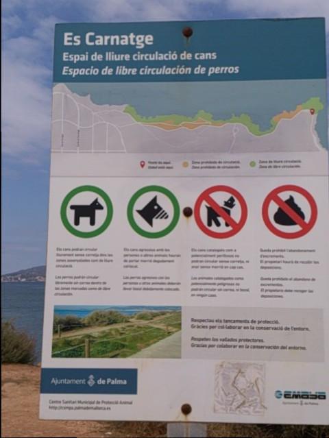playas en mallorca para perros