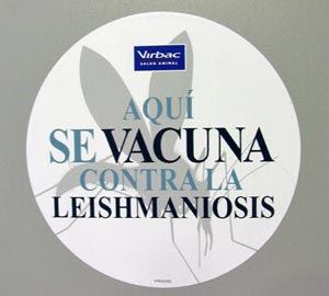 Campaña preventiva integral frente a leishmaniosis
