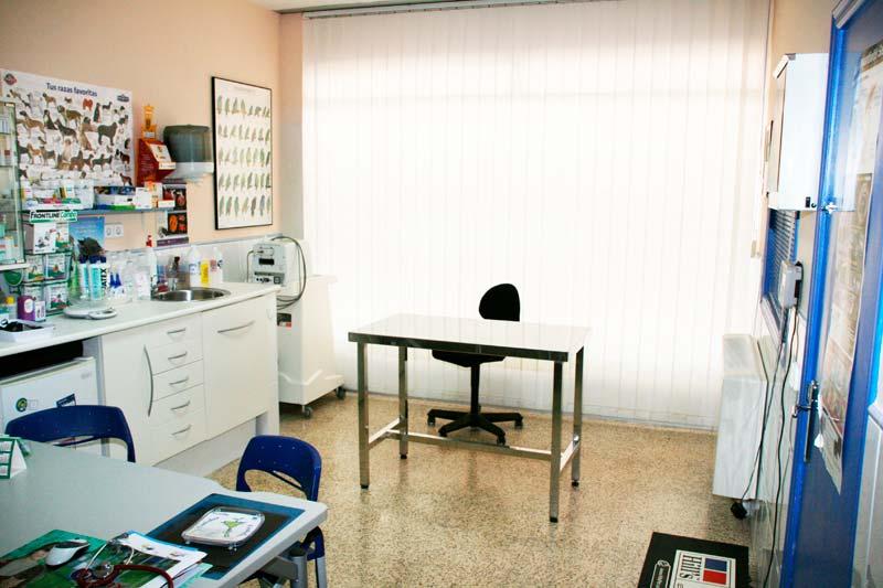clinica veterinaria  palma mallorca